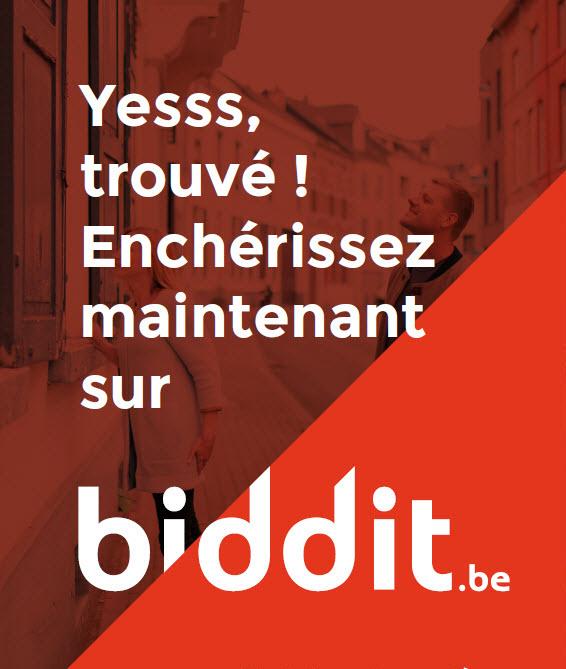 Le notariat lance les ventes immobilières online via www.Biddit.be
